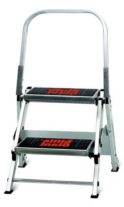 Little Giant 2-Step Ladder