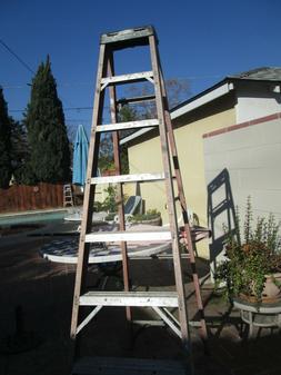 Werner 8 foot Aluminum Ladder