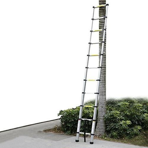 Folding Purpose Extension Ladders Building