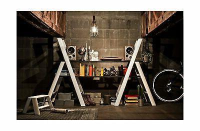 Hasegawa Ladders 3