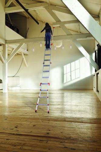 Little Ladder Velocity Type 22