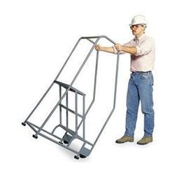 Rolling Ladder, Handrail, Platform 30 In H